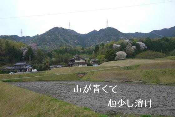 15_0423_03.jpg
