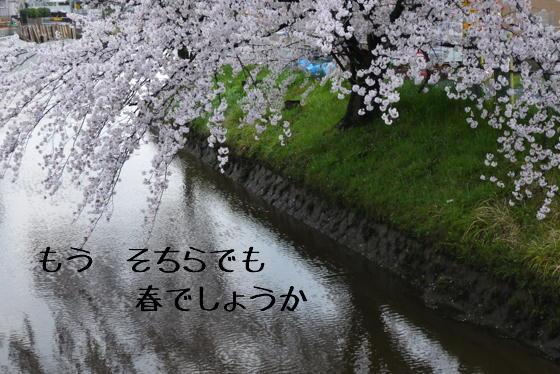 15_0423_05.jpg