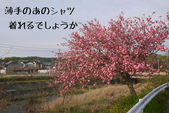 15_0423_06.jpg