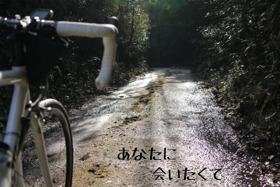 15_0423_10.jpg