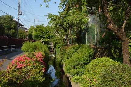 2015-05-01_119.jpg