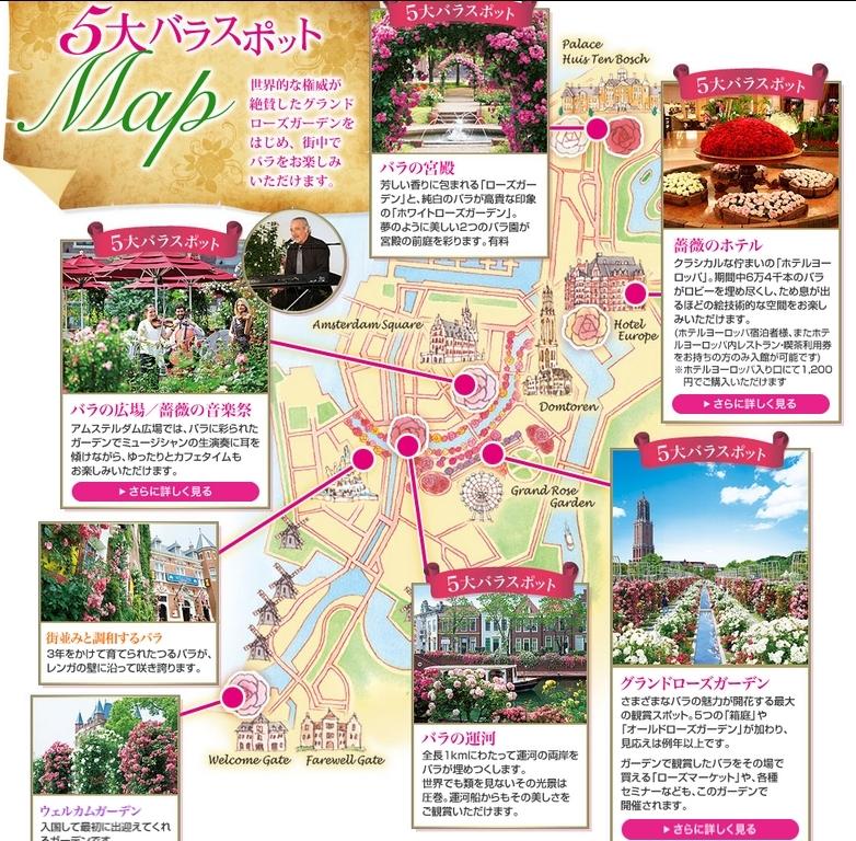 rose5spots.jpg