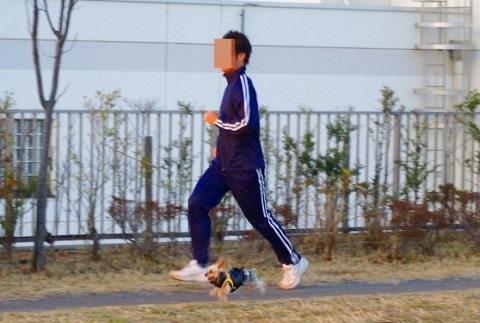 2014走り納め②