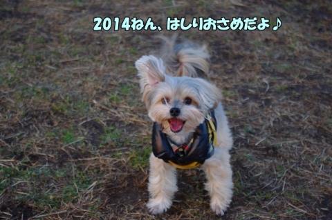 2014走り納め①