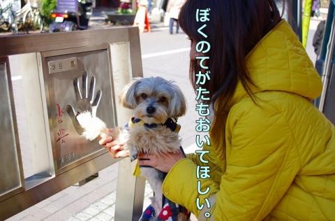 浅草・スカイツリー観光24