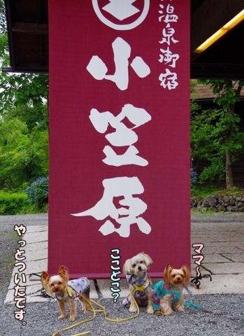 熊本旅行2015⑥