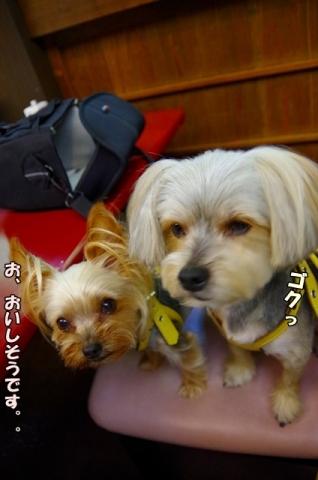 熊本旅行201525