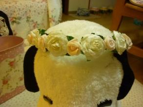 かんむりバラの花