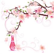 sakura-pickup-03_20150220155633a56.png