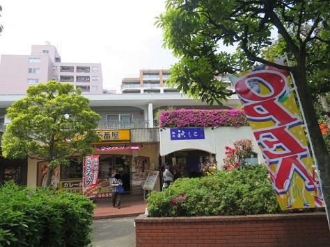m-akimoto39.jpg