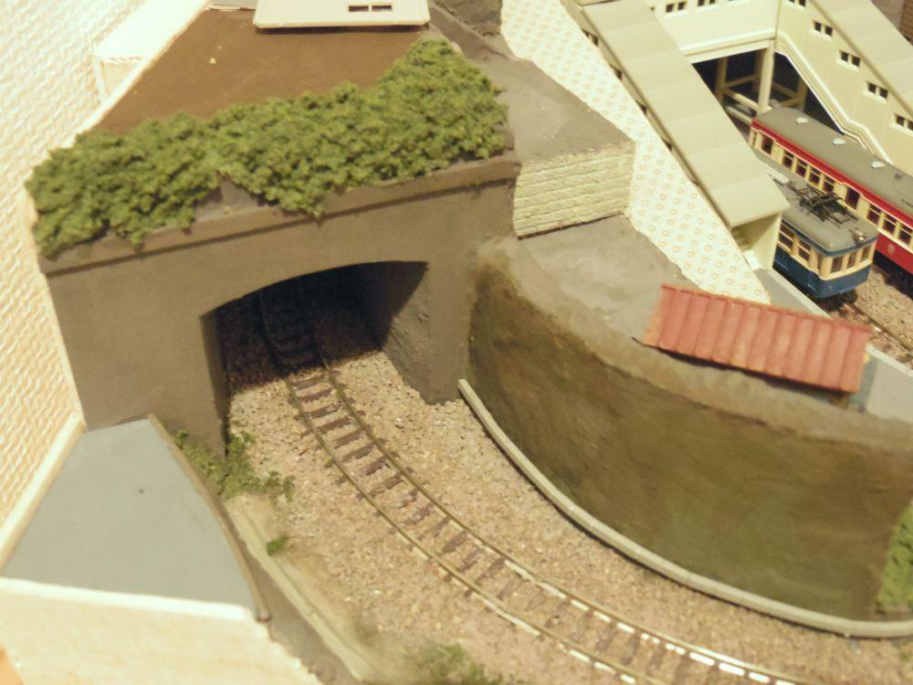 トンネルの上のほうにも草生えた