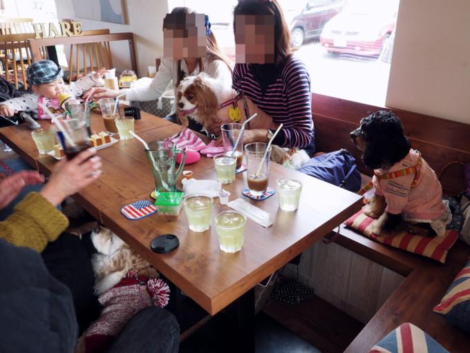 blog-P3212073.jpg