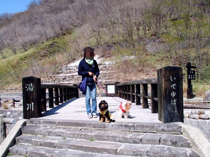 blog-P4258331.jpg