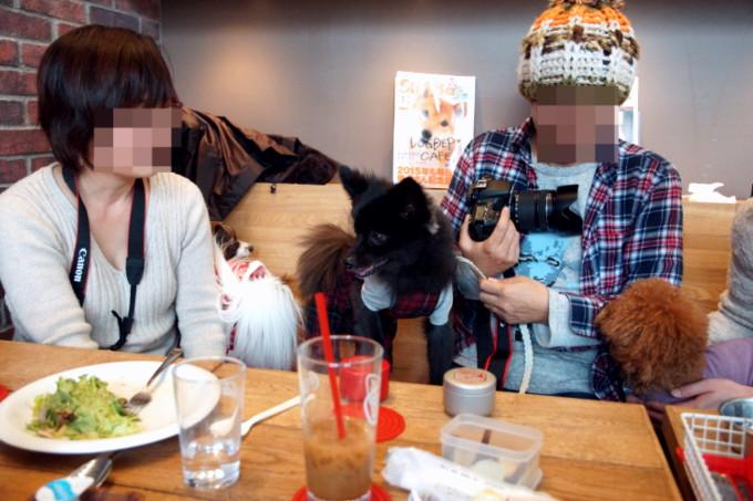 blog_DSC08270.jpg