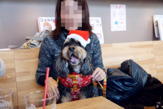 blog_DSC08562.jpg
