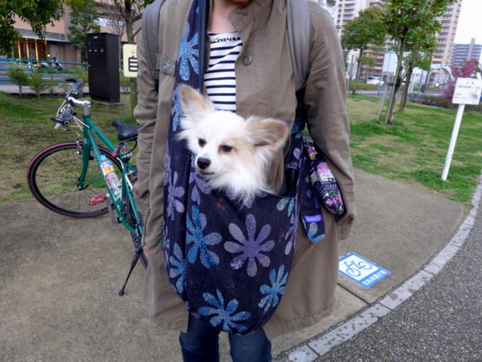 blog_P1140427.jpg