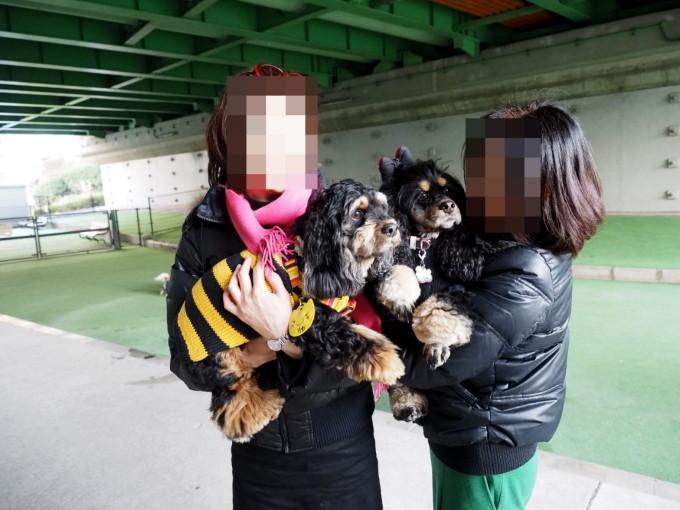 blog_P2110690.jpg