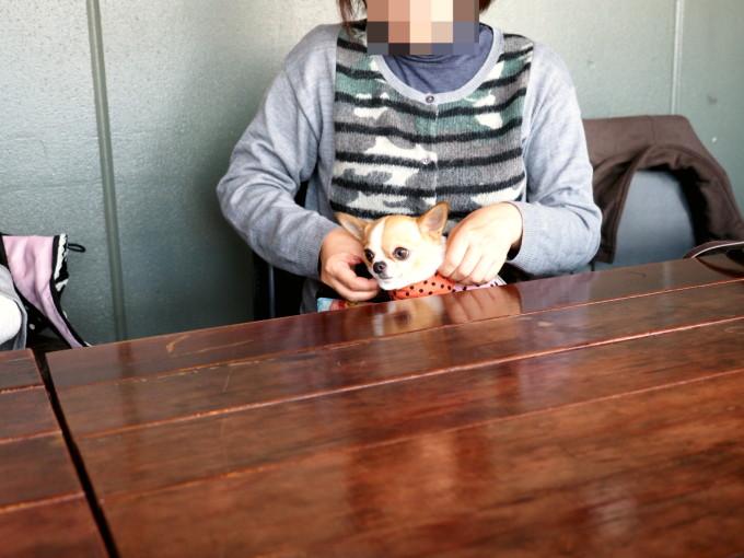 blog_P3111270.jpg