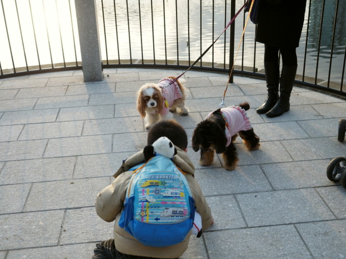 blog_P3111699.jpg