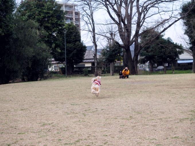 blog_P3212341.jpg