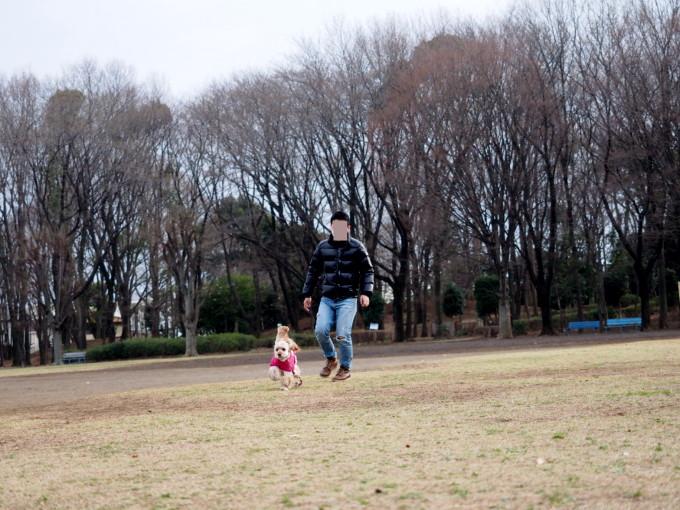 blog_P3212435.jpg