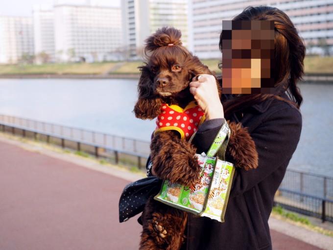 blog_P3223114.jpg