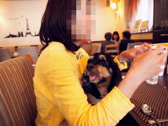 blog_P4186639.jpg