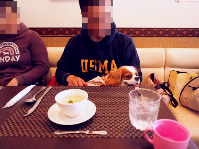 blog_P4186650.jpg