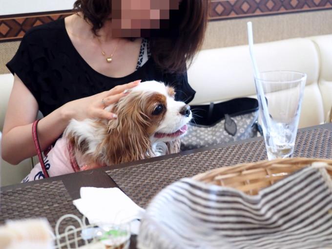 blog_P5050334.jpg