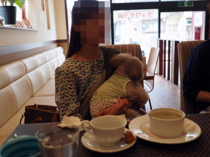 blog_P5241359.jpg