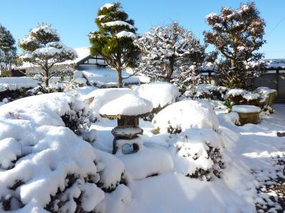 2015年お正月雪景色