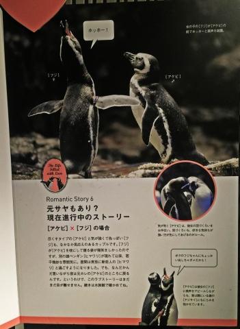 20150314-すみだ水族館 (17)-加工