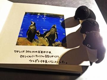 20150314-すみだ水族館 (57)-加工