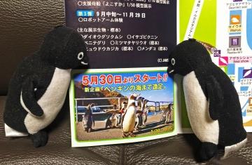 20150323-ぶん公さん (4)-加工