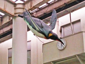 20150505-ICOCA ペンギンさんより (10)-加工