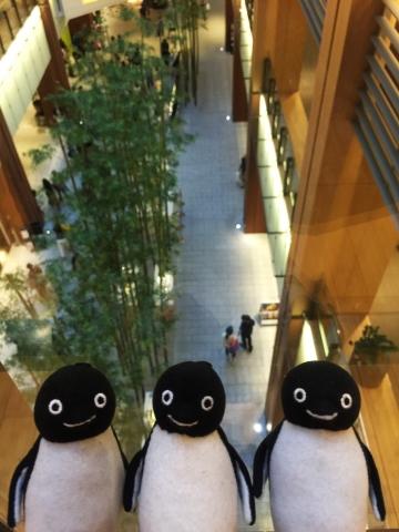 20150504-ビルボードライブ東京 (21)-加工