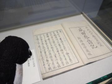 20150531-関宿城博物館 (15)