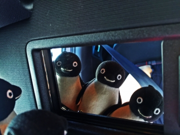 20150606-車内ペンギン・ビューティ・チェック (2)-加工