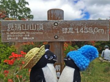 20150606-見晴山の山頂へ (8)-加工