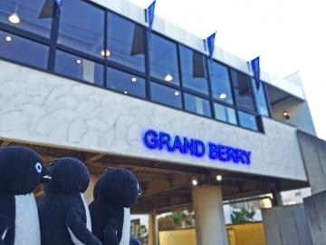 20150606-GRAND BERRY (5)-加工