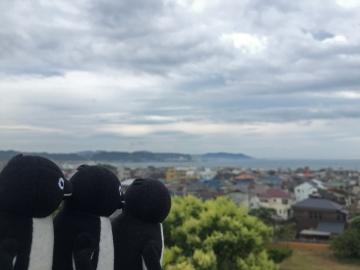 20150627-長谷寺 (4)-加工