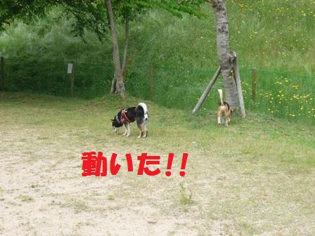 blog9402.jpg