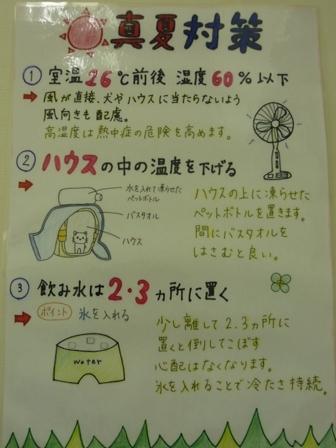 blog9524.jpg