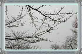 fc2_2015-01-30_16-52-30-864.jpg