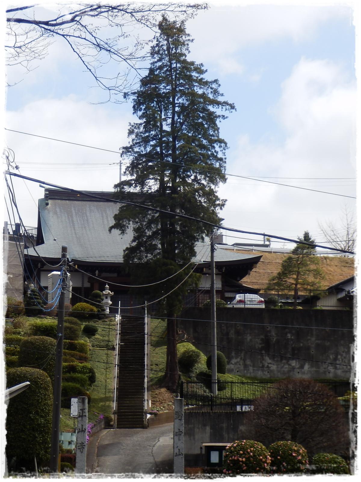 横山の道5