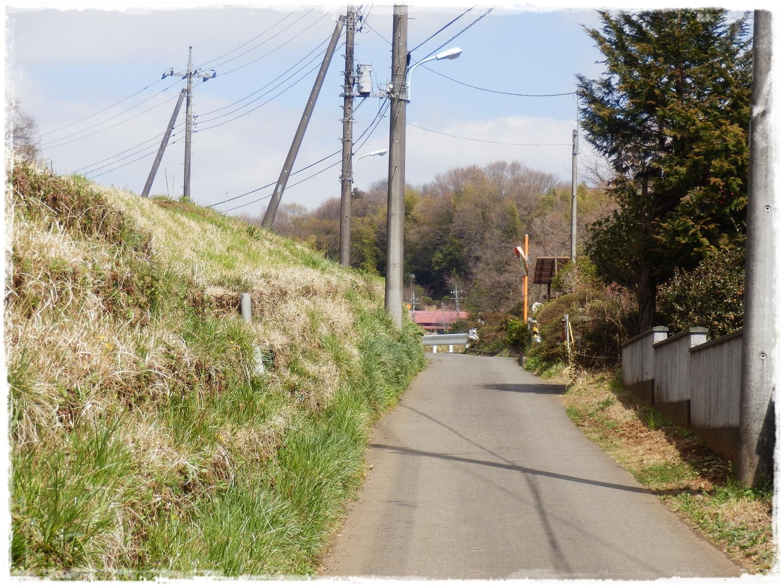 横山の道7