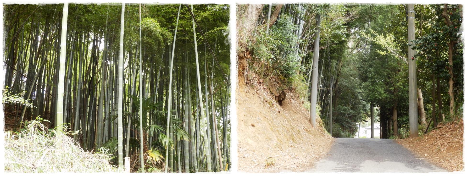 横山の道-horz3