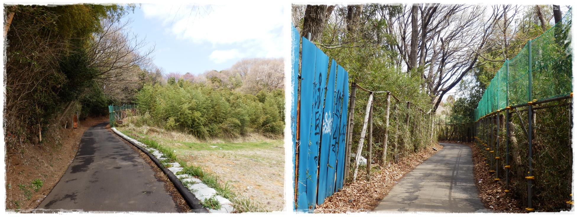 横山の道-horz4