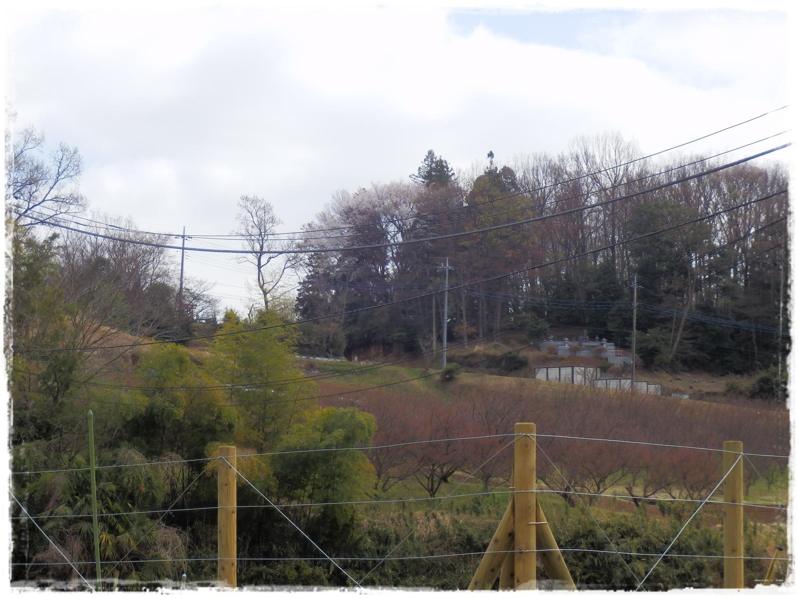 横山の道18