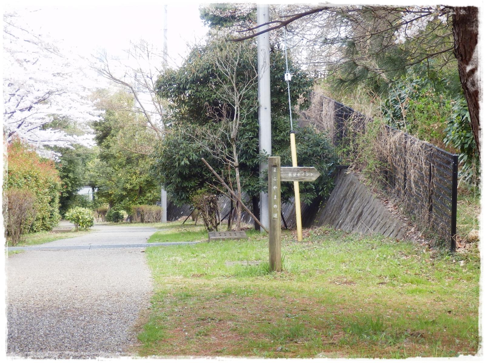 横山の道22